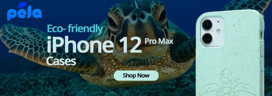 home-banner-turtle-case